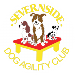 Sevenside Dog Agility Club